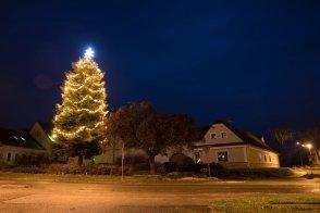 Vánoční strom už svítí